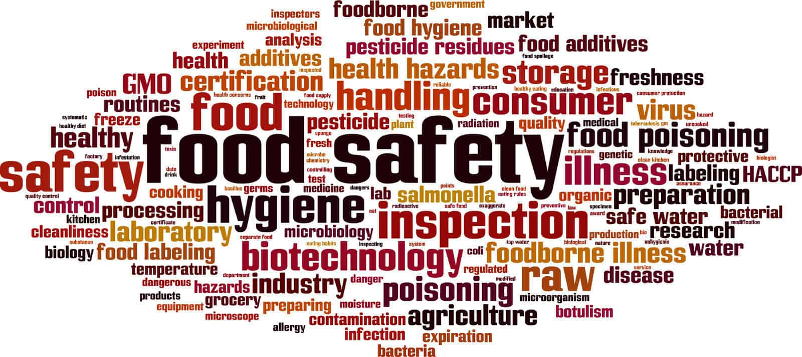 Contamination Definition Food Safety